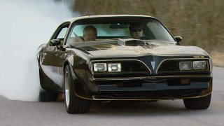 '78 Special Edition Pontiac Trans Am