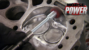 HorsePower's Port and Polish for Power How-To
