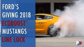 Guy Hit By Bus, Volvo And Kangaroos, Mustang Line Lock, Silent Electrics, And Saleen's New Shop