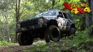 Low Dollar Wheeler Off-Road