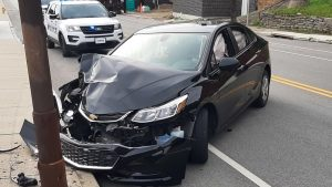 Cicada Responsible For Ohio Driver's Car Crash